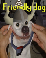 Friendly Dog's Photo